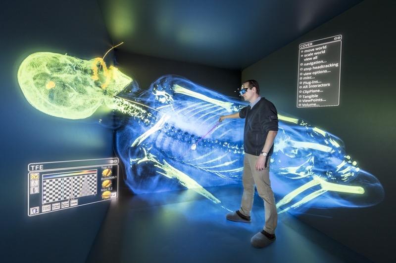 Ein Schussopfer abgebildet in der Cave: Rechtsmediziner der Universität Zürich haben den Toten vor der Autopsie geröntgt. Durch das virtuelle Abbild kann der Verlauf der Schusskanäle leicht rekonstruiert werden. (Foto: Thomas Klink, Datenquelle: Virtopsy, Institut für Rechtsmedizin, Universität Zürich)