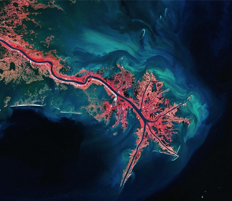 Ein dichter Schilfgürtel säumt das Ufer des Mississippi-Deltas. Auf diesem Falschfarben-Bild in leuchtendem Rot dargestellt, das Meer ist schwarz. (Foto: USGS/ESA)