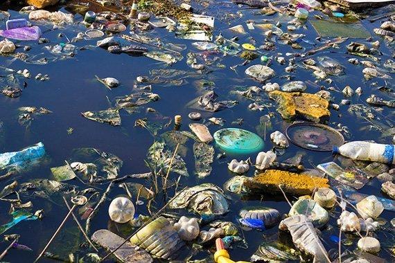 Plastikmüll im Tümpel