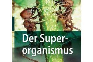 04_2010_der_superorganismus.jpg
