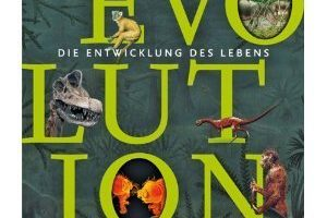 04_2010_evolution.jpg