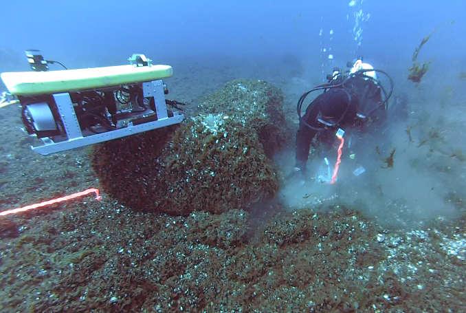 14-04-28 Diver.jpg