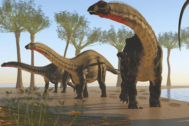 15-04-07-brontosaurus.jpg