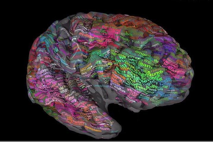 16-04-27-brainatlas.jpg