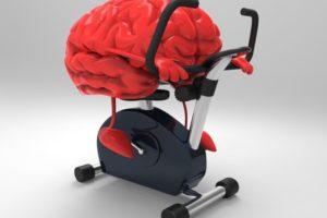 16-06-16 Gehirn.jpg