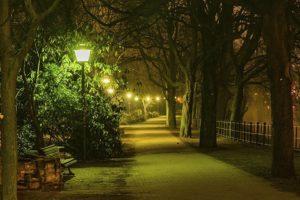 16-06-28-nachtbaum.jpg
