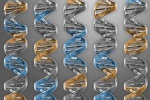 17-03-09 DNA.jpg