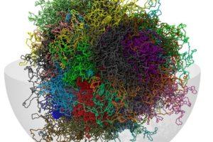 17-03-09+Genom+in+3D_Seite.jpg