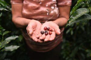 17-09-12-kaffee.jpg
