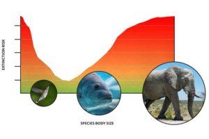 17-09-19-extinction.jpg