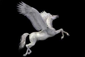 17-10-15 Pegasus.jpg