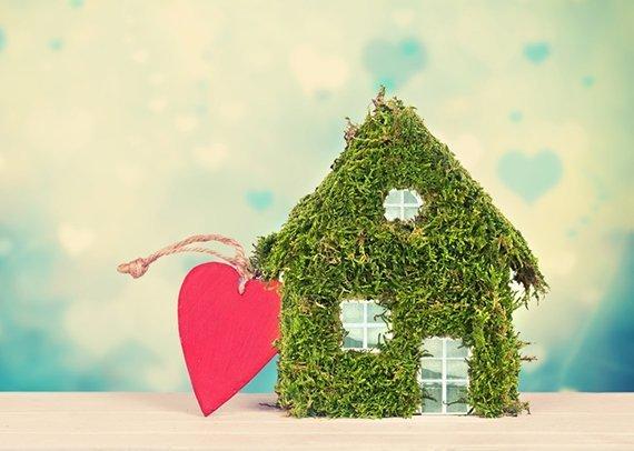 Grüne Haushalte
