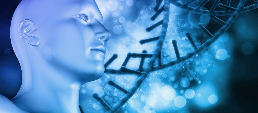 Geischt und DNA