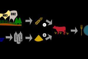 Mikrobenfutter