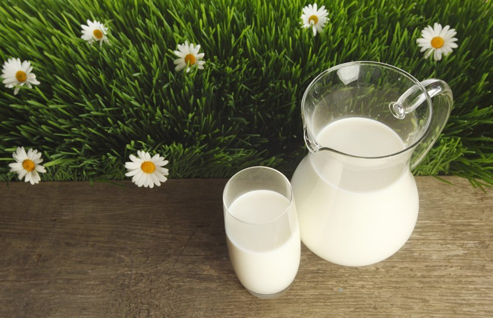 Milchkrug