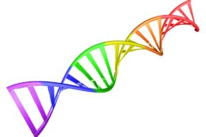 Regenbogen-DNA
