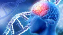 Alzheimer und Gene