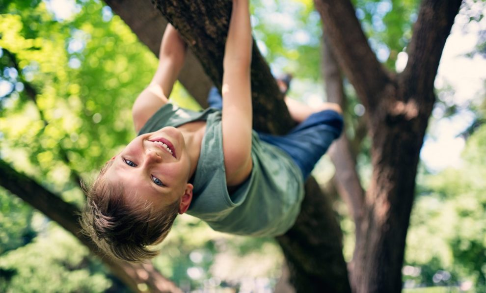 Klettern im Baum