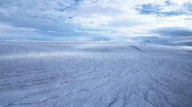Devon-Eisschild