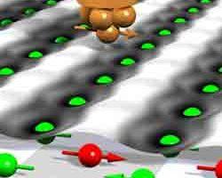 2001_08_bild.jpg