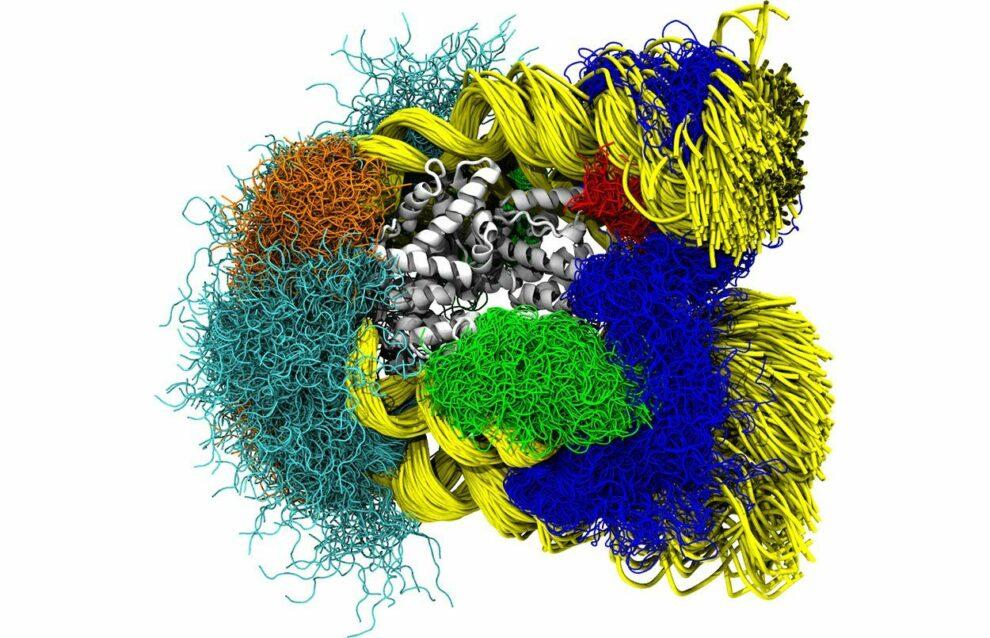 DNA und Histone