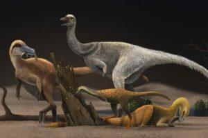 Alvarezsauroiden