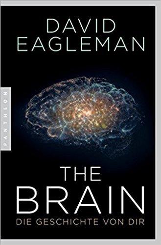 B-11-17 The Brain.jpg