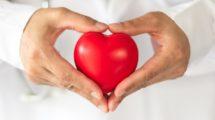 Arzt hält Herz in den Händen