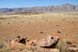 Feenkreise in Namibia Stephan Getzin_UFZ