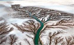 Watermark Colorado River Mexiko