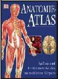 anatomie_atlas.jpg