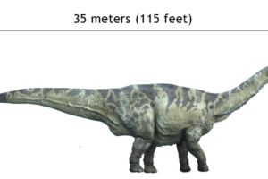 argentinosaurus_size_compasison_with_man.png