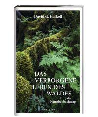 haskell_wald_dummy_klein.jpg