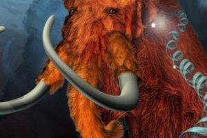 mammut01.jpg