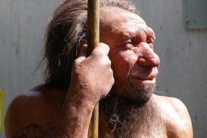 neandertaler04.jpg