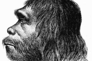neandertaler_onl.jpg