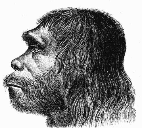 neanderthaler_fund_hermann_schaaffhausen.jpg
