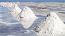 Salzfelder