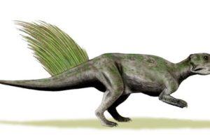 psittacosaurus_mongoliensis.jpg