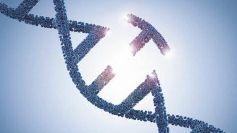 Symbolbild Gen-Reparatur