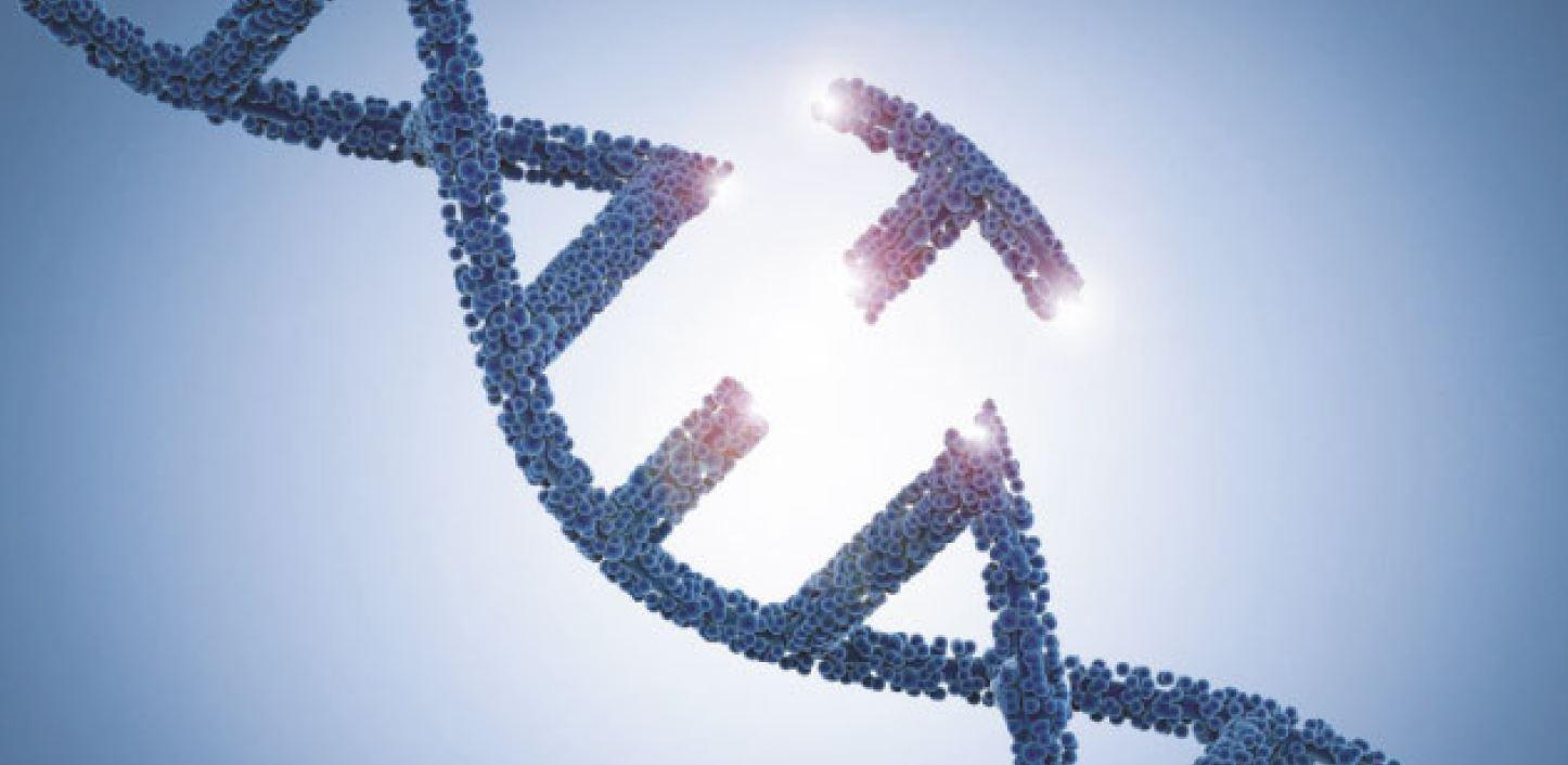 Reparatur-Werkzeug-f-r-Gene