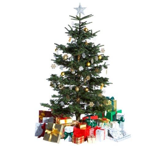 weihnachtsbaum01.jpg